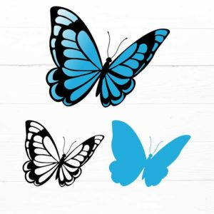 Butterfly template SVG