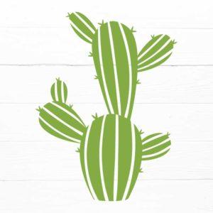 Cactus SVG 4